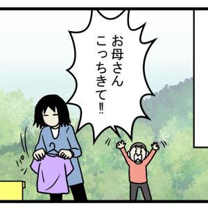 息子がレア昆虫を発見!? 自宅の庭にいた「大きいテントウムシ」の正体