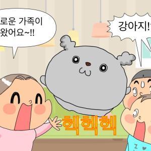 『アンニョン江原道家族』第1回