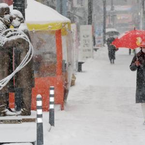 江原道が雪に包まれました