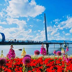 春川(チュンチョン)スカイウォークはやっぱり美しい