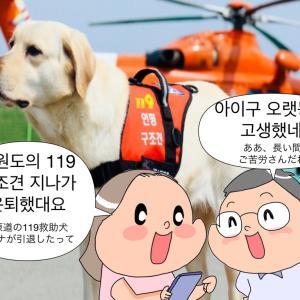 『アンニョン江原道家族』第52回私の救助犬の巻