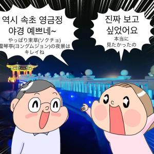 『アンニョン江原道家族』第60回日帰り束草(ソクチョ)の夜景の巻