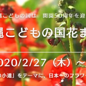 春爛漫!沖縄こどもの国の花まつり2020はメルヘン
