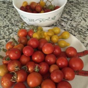 トマトのピクルスと炒め物