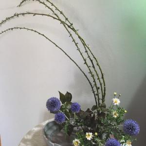 8月の庭ー瑠璃玉アザミ、アルストロメリア等々