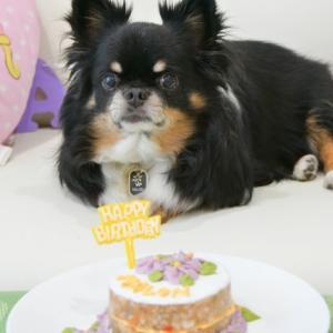 誕生日ケーキと・・・複雑な思い
