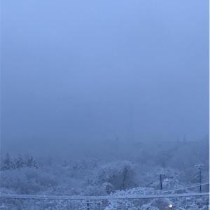 吹雪でランオフ。