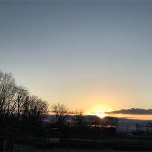 今年初めての朝の光を浴びながラン