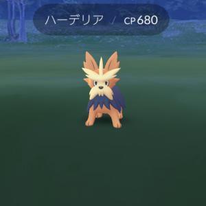 ポケモンgoハーデリアGETだぜ〜