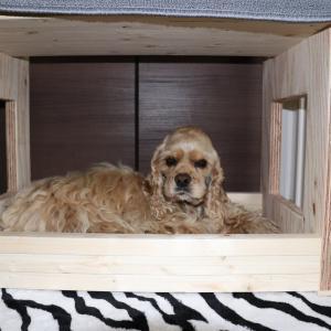 どかーんと!新しい様式のベッド??ダス!