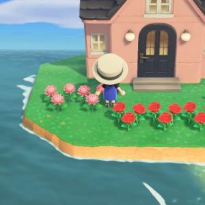 海辺の生活