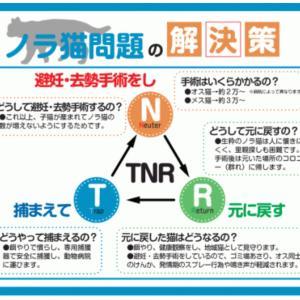 """""""TNR活動への支援"""""""