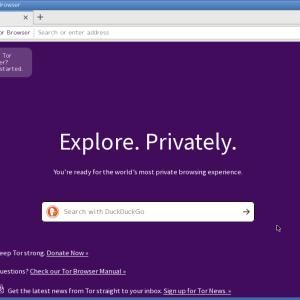 超軽量Linux:PuppyLinuxに匿名性の高いブラウジングを実現できる Tor Browserをインストール!-PuppyLinux Tor Browser