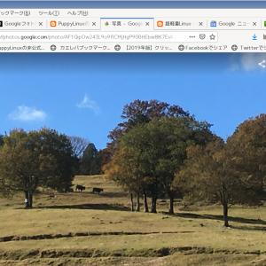 気になる木になるりんごニュース:Googleフォトにチャット機能が追加され、写真の共有が簡単になります!-ニュース,グーグル,インスタグラム