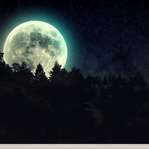 超軽量Linux:Debian/SparkylinuxをベースにしたGNU/Linuxディストリビューション Sparky Bonsai をインストール 日本語化!-超軽量Linux,PuppyLinux,Debian