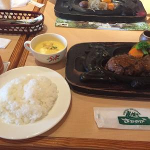 番外編 静岡のとりあえず一回食べてほしいハンバーグ!!
