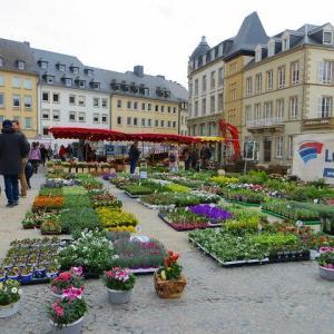 ルクセンブルク旧市街 ルクセンブルクの語源・・・とは? ギョーム広場 土曜日朝の花市場 ギョーム2世・・・とは? オランダ王・ウィレム2世