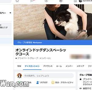 オンラインコース11月期生募集中!