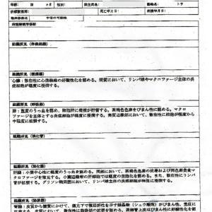 告発状を持って沖縄警察署へ