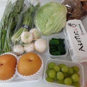 花材の一部が入手困難によりリニューアルのお知らせ/道の駅で野菜の買い出し