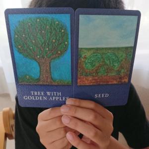 何でも根に持たない、笑顔、集中して自分を見つめる環境を作る〜小学生のライフツリーカード