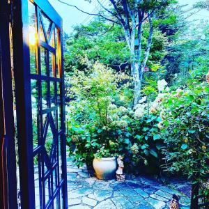 続軽井沢〜緑とおいしいものがあれば生きていける