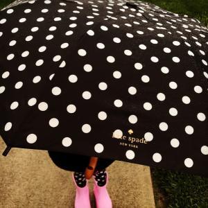 傘もケイトスペード♠️