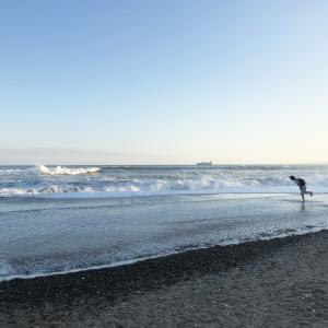 伊良湖岬でロング散歩