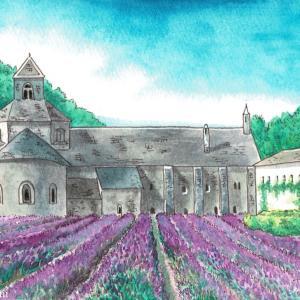 セナンク修道院でのラベンダー畑風景