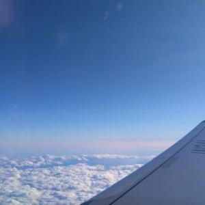 ◇今日の空