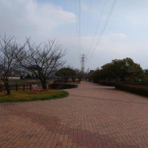 ◇今日の散歩道