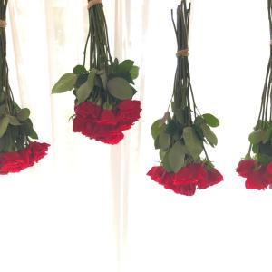 【ブログ】バラをドライフラワーに