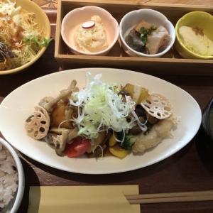 【天王寺】あべのキューズモールで⭐︎「白身魚とたっぷり10種野菜の黒酢あんランチ 」(jambuka)