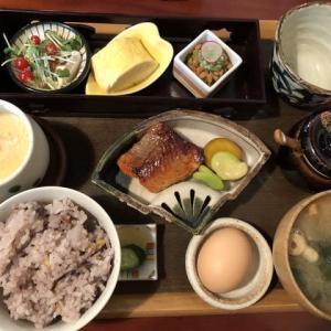 【西別院】発酵料理のお店でランチ☆「旬魚の発酵料理プレート」(発酵薬膳料理禅)