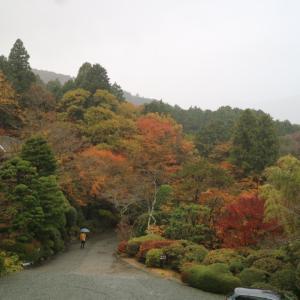 2019箱根旅…お宿の朝ごはん♪