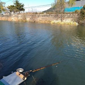 へらぶな釣り 今週も竹馬川