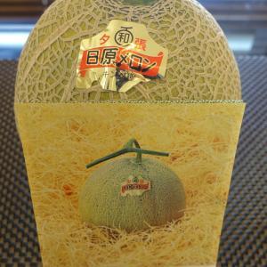 ふるさと納税!極上の一品日原メロンキング種北海道産(1.6kg相当×1玉 )甘い果汁が溢れる!