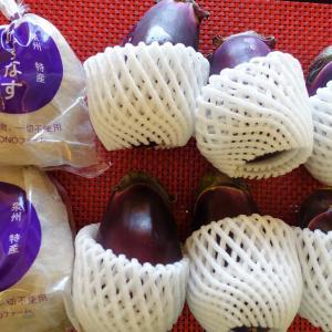 ふるさと納税!特選無添加水なす漬と徳用水ナスセット!季節限定の味覚、泉佐野市から。