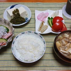 柚子採り隊24.5日目 怪我の状況と。