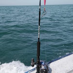 平成最後の魚釣り