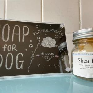 犬の手作り石鹸を作るワークショップ