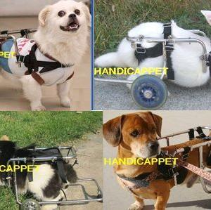handicappet.net歩行補助小動物の車イス.ハーネス老猫老犬兎ミニブタ豚