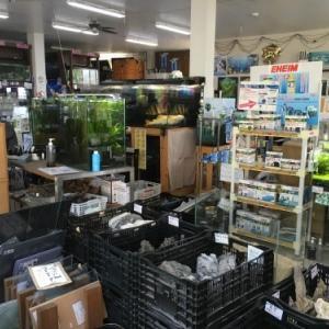 shop report 3