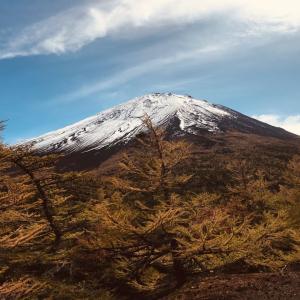 今シーズン初の載冠雪富士山!紅葉見に来て良かったよ。