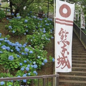 熊本城の「今」を「特別見学通路」から見に行った【熊本の話題】