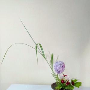 今月から生け花教室を再開しました。