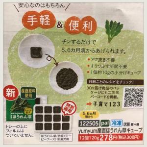 【パルシステム】産直ほうれん草キューブ