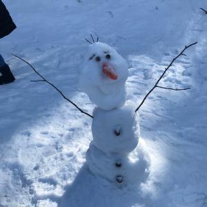 今年の冬の思い出写真見せて!