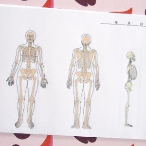 体の状態を視覚化