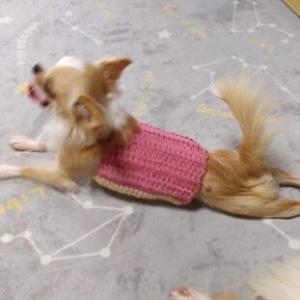 ナナちゃんの二着目のセーター完成